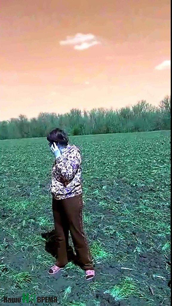 Пайщики были просто в шоке от того, что они увидели на полях первого мая: пшеница, которая стояла в колено и обещала великолепный урожай — уничтожена.